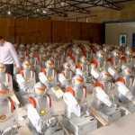 Robot que corta fideos, La ultima moda en china