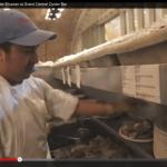 VIDEO::: EL mejor abridor de Ostras en USA